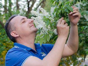 6 Интересных фактов об ароматах