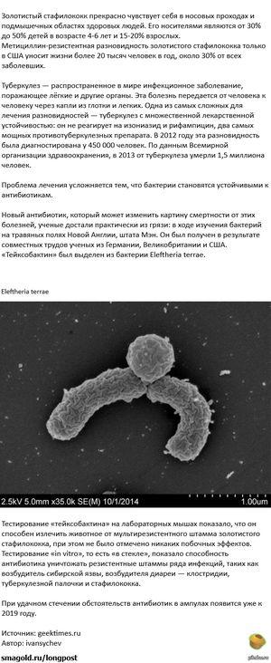 Антибиотики-победа над инфекцией.