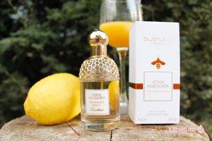 Aqua allegoria mandarine basilic: напоминание о летнем зное