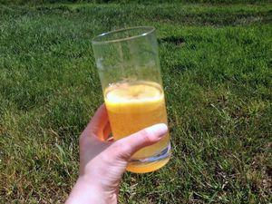 Чайный гриб, как альтернатива вредным газированным напиткам