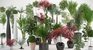 Цветы в интерьере квартиры: живые растения для дома