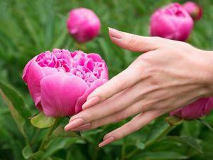 Делаем своими руками масло для укрепления ногтей