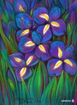 Ирис, нарцисс и тюльпаны. часть первая