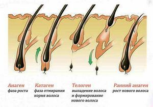 Эпиляция волос на ногах