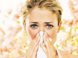 Эти источники аллергенов есть почти в каждом доме!