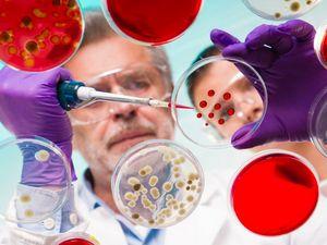 Как предупредить наследственные заболевания?