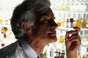 Классификация парфюмерии: «ниша», люкс, mass market, mastige