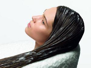 Комнатные растения в лечении кожи и волос