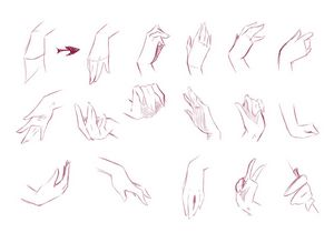 Руки и кисти рук