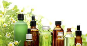 Средства для борьбы с растяжками — масло шиповника