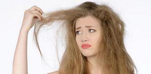 Сухие волосы. уход за сухими волосами